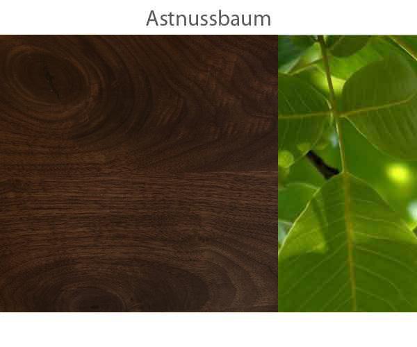 Astnussbaum-.jpg