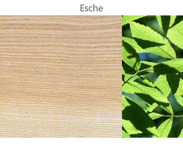 Esche.jpg