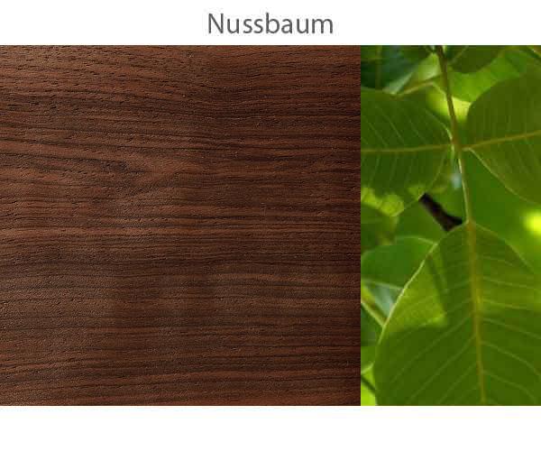 Nussbaum-.jpg