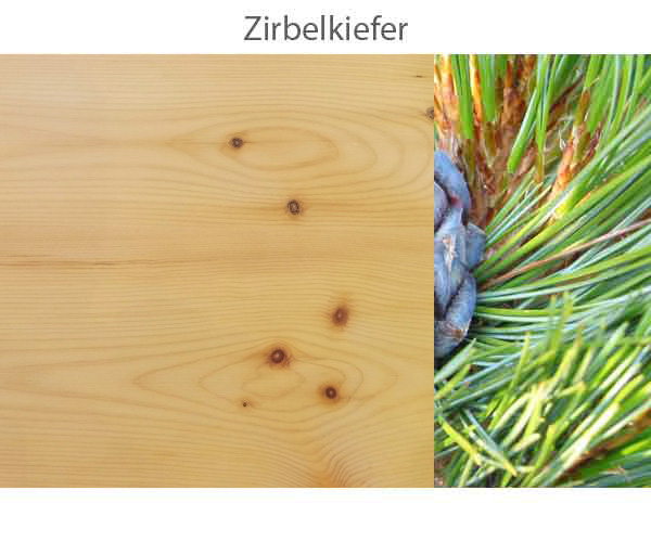 Zirbelkiefer-.jpg