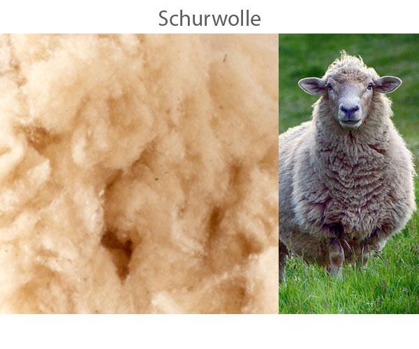 Schurwolle.jpg